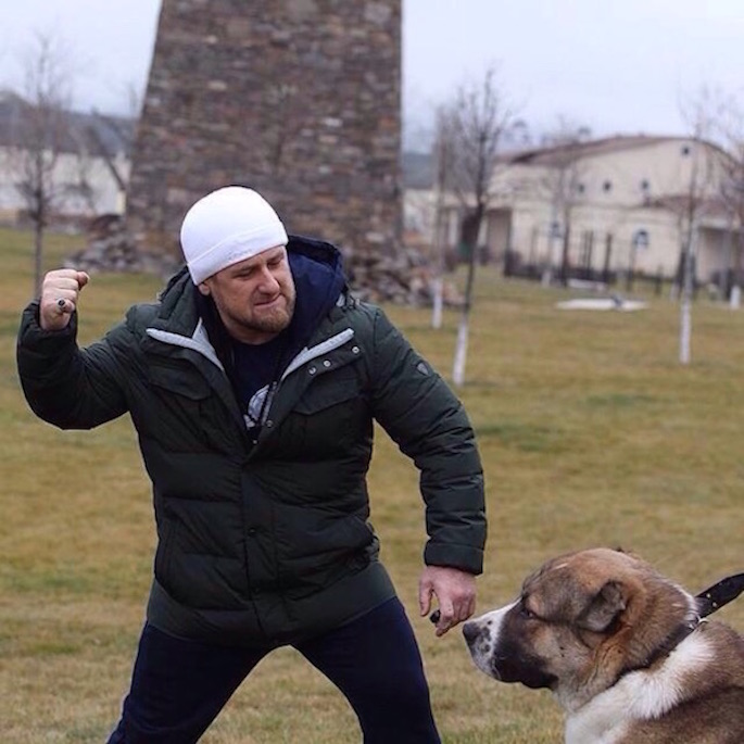 Bildergebnis für Кадыров собака
